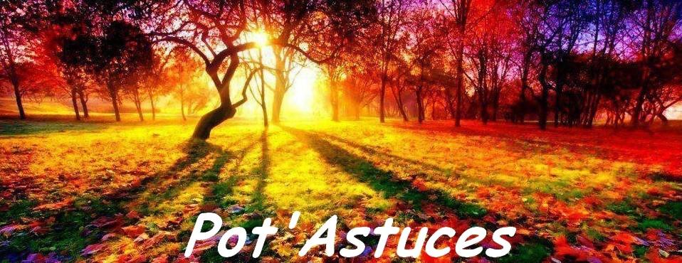 Pot'Astuces