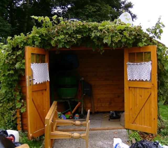 Cloture jardin chien la rochelle 27 for Entretien jardin la rochelle