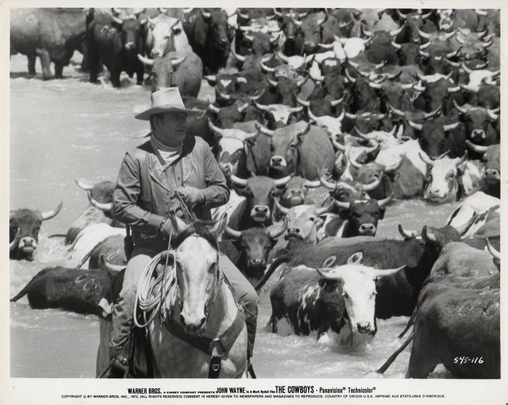 Cowboys forum the ranch
