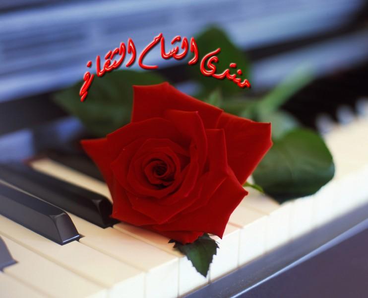 منتدى الشام الثقافي