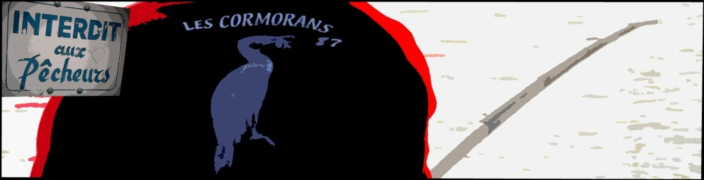 CORMORANS - SAILLAT