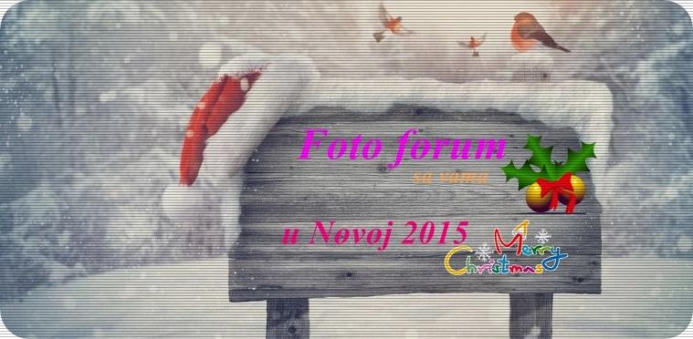 Foto - forum