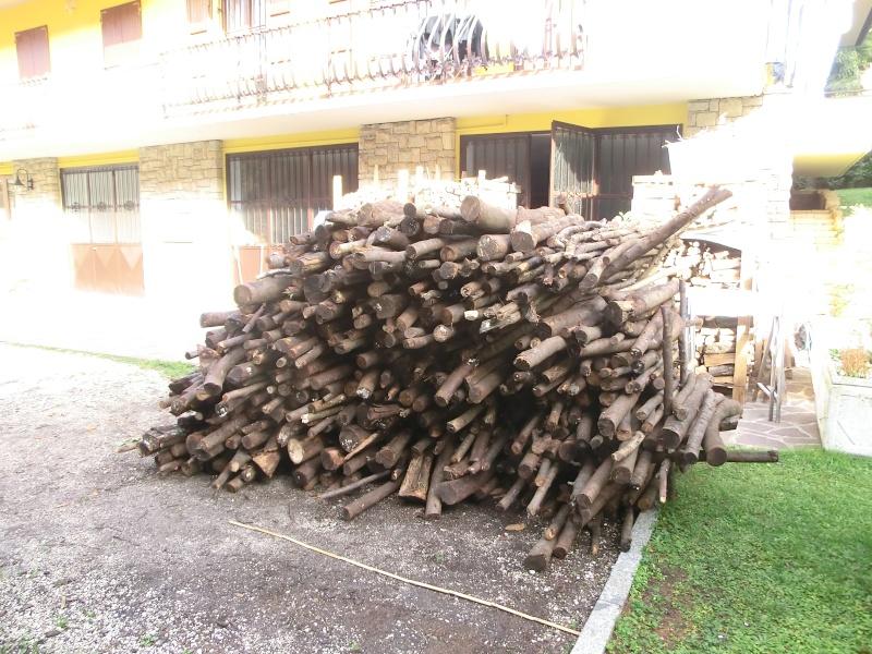 Prezzi legna da ardere pagina 11 for Legna da ardere prezzi