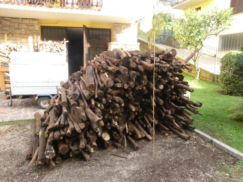 Prezzi legna da ardere pagina 12 for Legna da ardere prezzi