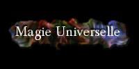 Adepte de la magie universelle
