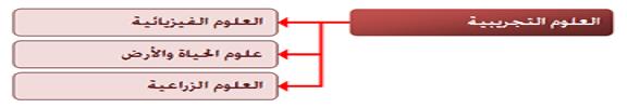 http://i81.servimg.com/u/f81/15/50/32/53/2112.png