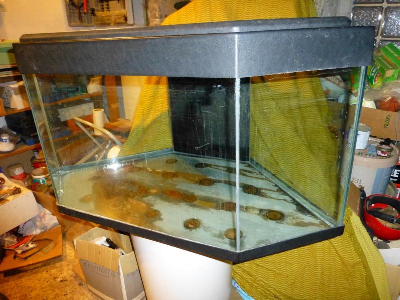 Vend aquarium d 39 angle 170l 80 for Vend aquarium