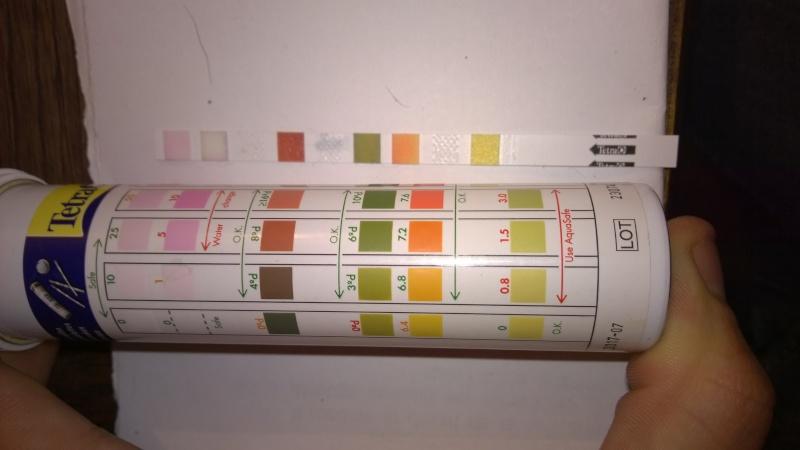 Résultats couleurs des tests bandelettes Tetra 6 en 1